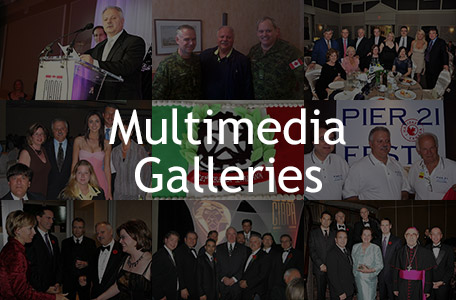 Multimedia Galleries